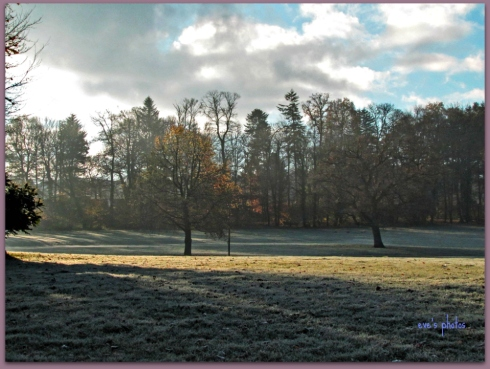 the frosty grounds of the chateau
