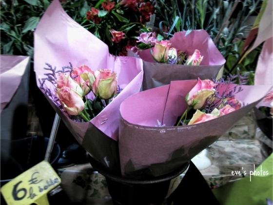 apinkflowers99