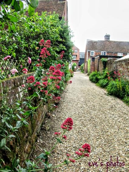 The lane between the houses - Tenterden, UK.